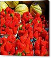 Melons And Strawberries Canvas Print