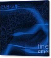 Membrane 2 Canvas Print