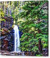 Memorial Falls In Montana Canvas Print