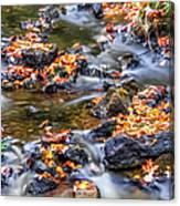 Memorial Falls Iv Canvas Print