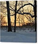 Memories Of Winter Canvas Print