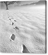 Memory Traces Of A Cold Day Canvas Print