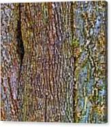 Menage A Tree Canvas Print