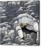 Mendenhall Lake Ice Abstract Canvas Print