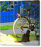 Meow Cat In Verdun Waiting By The Step Beautiful Summer Montreal Pet Lovers City Scene C Spandau Canvas Print