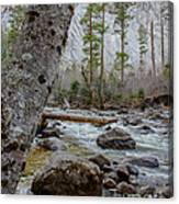 Merced River From Happy Isles Canvas Print