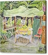 Merizo Fruit Stand Canvas Print