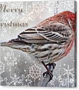 Merry Christman Finch Greeting Card Canvas Print