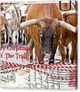Merry Christmas From The Trail Canvas Print