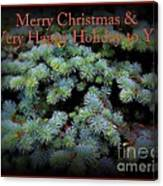 Merry Christmas And Happy Holiday - Blue Pine Holiday And Christmas Card Canvas Print