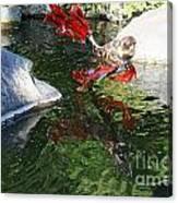 Merry Koi Canvas Print