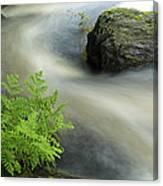 Mersey River Nova Scotia Canada Canvas Print