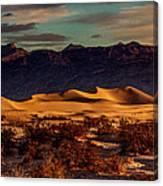Mesquite Flat Sunrise Canvas Print