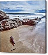 Message In A Bottle Canvas Print