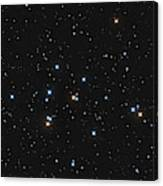 Messier 44, The Beehive Cluster Canvas Print