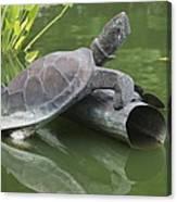 Metal Turtle Canvas Print