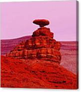 Mexican Hat  Canvas Print