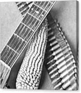 Mexican Revolution, Guitar, Corn Canvas Print