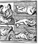 Mexico: Smallpox Epidemic Canvas Print
