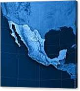 Mexico Topographic Map Art Print