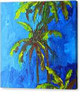 Miami Beach Palm Trees In A Blue Sky Canvas Print