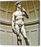 Michelangelos David  Canvas Print
