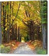 Michigan Back Roads Canvas Print