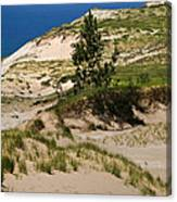 Michigan Sleeping Bear Dunes Canvas Print
