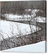 Michigan Stream Canvas Print