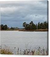 Michigan Wetland Canvas Print
