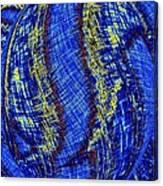 Micro Linear 41 Canvas Print