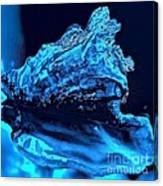 Midnight Blue Sea Shell Canvas Print