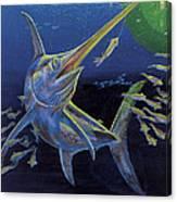 Midnight Encounter Off0023 Canvas Print