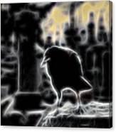 Midnight Glow Crow Canvas Print