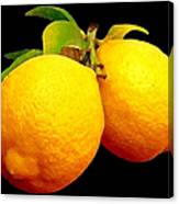 Midnight Lemons Canvas Print