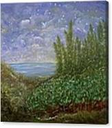 Midnight Lullaby Canvas Print