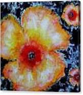 Midnight Poppies Canvas Print