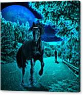 Midnight Vision Canvas Print