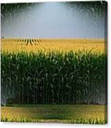 Midwest Gold Canvas Print