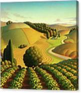 Midwest Vineyard Canvas Print
