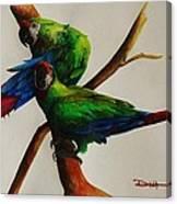 Military Macaws Canvas Print