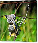 Milkweed Retirement  Canvas Print