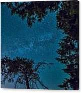 Milky Way Framed Trees Canvas Print