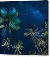 Milky Way From Jambiani Beach Canvas Print
