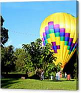 Mind If I Land In Your Backyard 1 Canvas Print