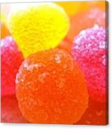 Mini Sugar Fruits Canvas Print
