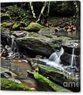 Mini Waterfalls Canvas Print