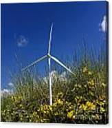 Miniature Wind Turbine In Nature Canvas Print