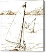 Mint Classic Moth In Sepia  Canvas Print