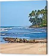 Mirissa Beach Sri Lanka Canvas Print